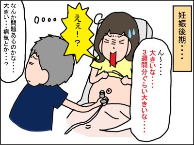 ナニ 妊娠 障害 発達 お 中